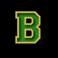 Bandys High School logo
