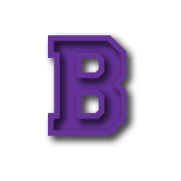 Bennett County High School logo