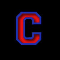 Camden School of Arts & Technology logo