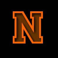 Nelsonville-York logo