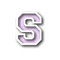 Shenandoah Valley High School logo