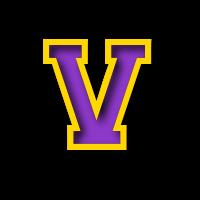 Vermilion logo