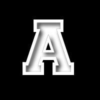 andy11 logo